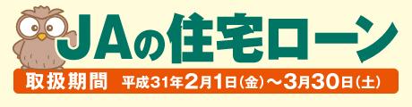 bn_jyutaku2019.02